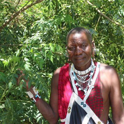 Massai, Heilkundiger