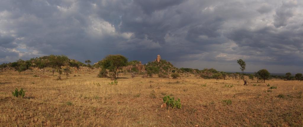 Serengeti, Kopjes