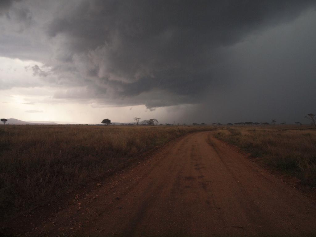 Gewitter in der Serengeti