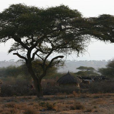 Massai-Boma